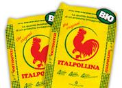 Itallpollina
