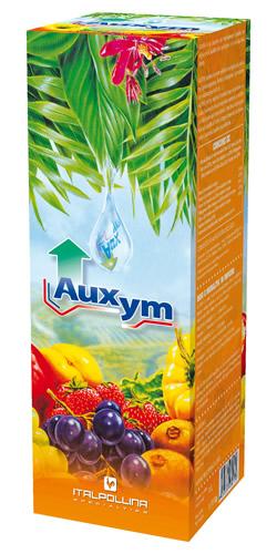 auxym-scatola